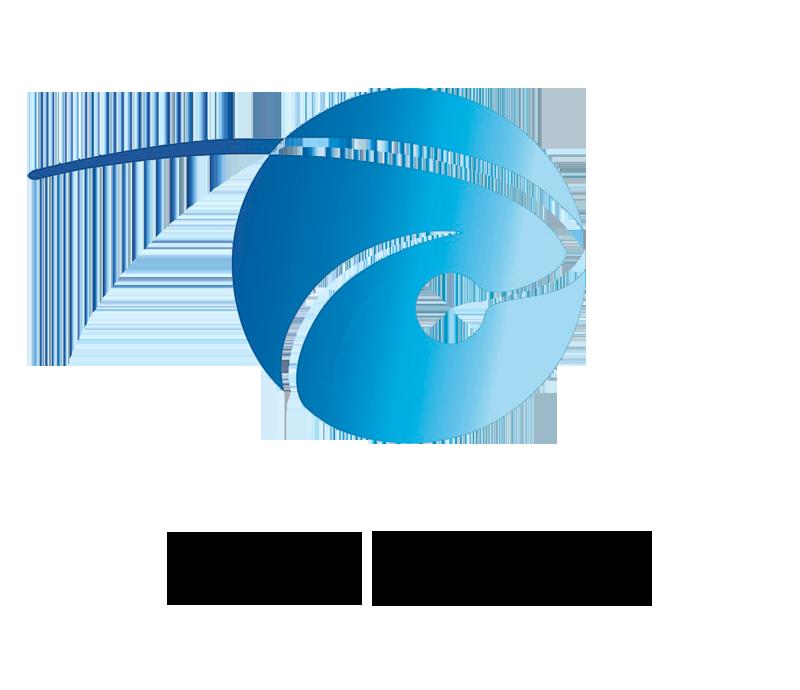 Nepfood-Logo